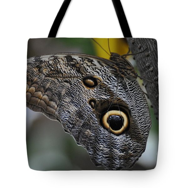 Tote Bag featuring the photograph Owl Butterfly by Bianca Nadeau