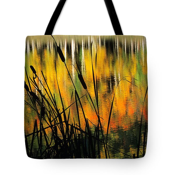Tote Bag featuring the photograph Owl Creek Pass Fall 3 by Susan Rovira