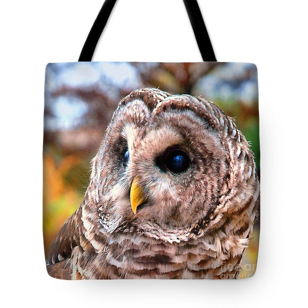 Owl Gaze Tote Bag