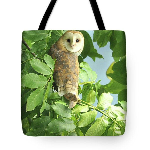 Tote Bag featuring the photograph owl by Rod Wiens