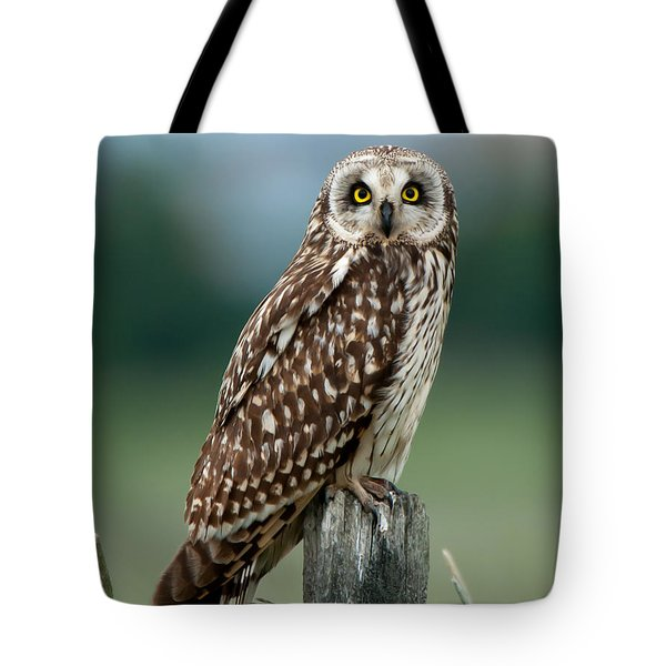Owl See You Tote Bag by Torbjorn Swenelius