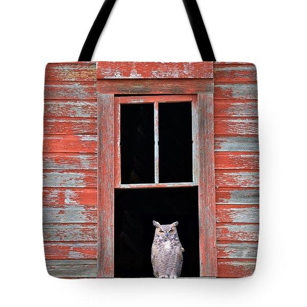 Owl Window Tote Bag by Leland D Howard
