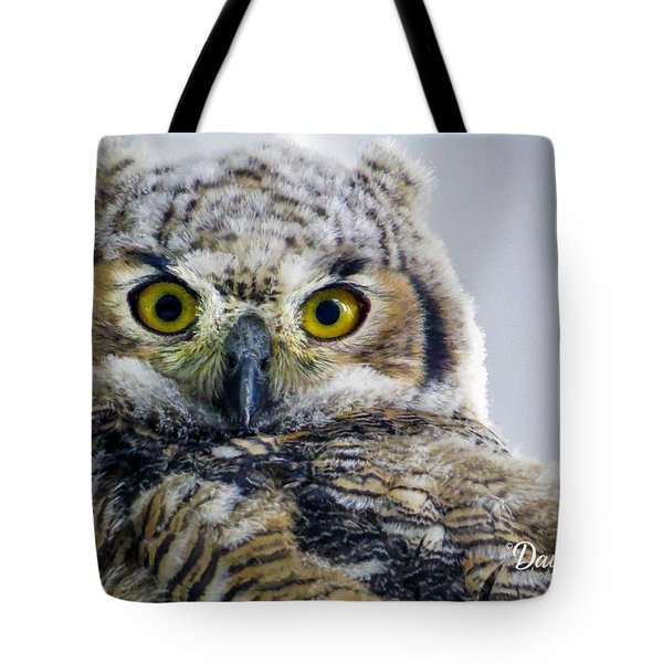 Owlet Close-up Tote Bag