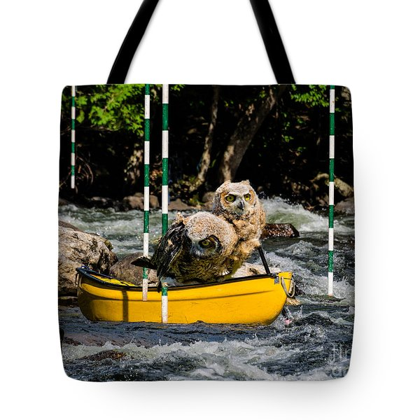 Owlets In A Canoe Tote Bag