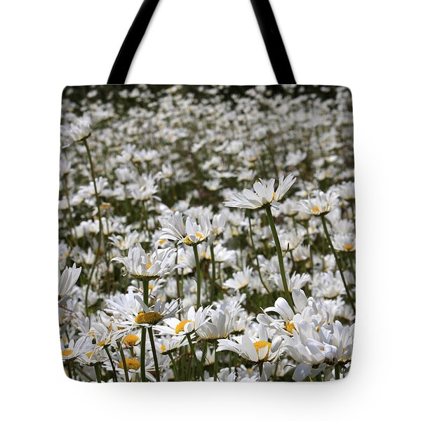 Ox Eye Daisies Tote Bag