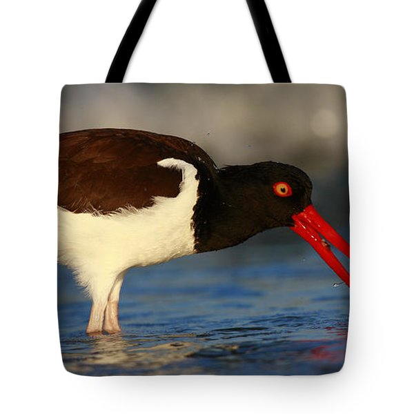Oystercatcher In Surf Tote Bag