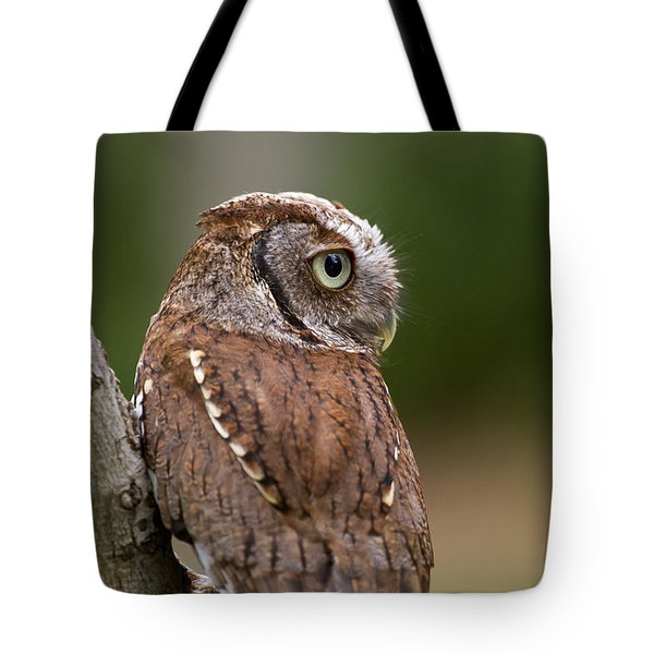 Pablo The Screech Owl Tote Bag