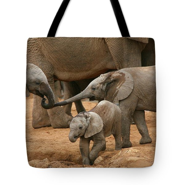 Pachyderm Pals Tote Bag by Bruce J Robinson