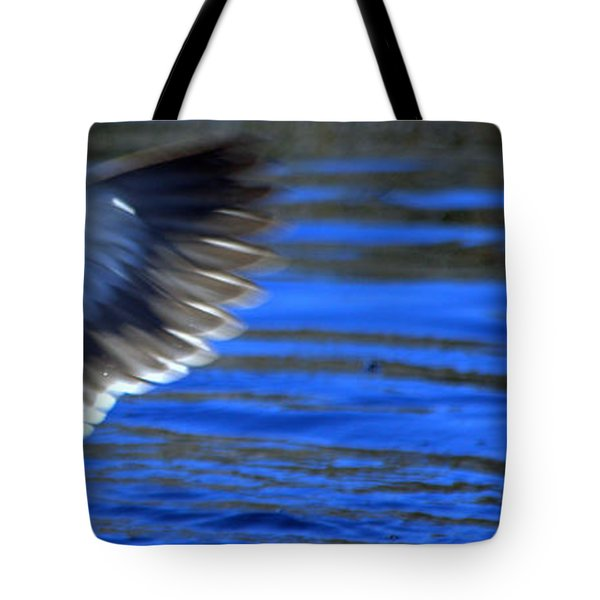 Tote Bag featuring the photograph Pacific Black Duck by Miroslava Jurcik