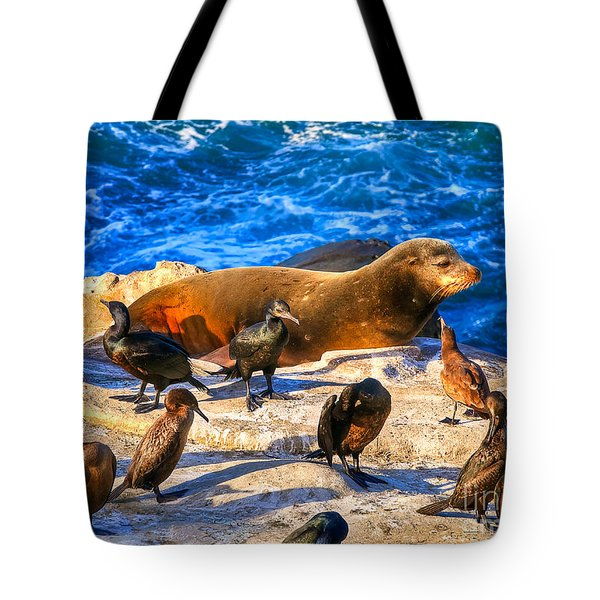 Pacific Harbor Seal Tote Bag by Jim Carrell
