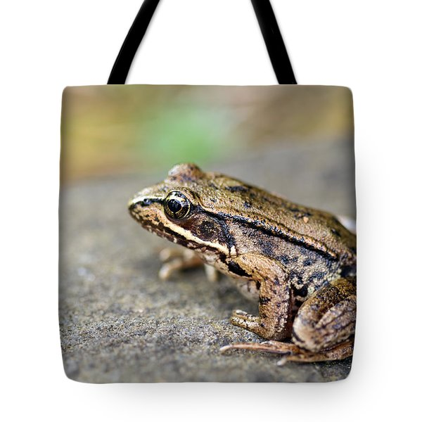 Pacific Tree Frog On A Rock Tote Bag by David Gn