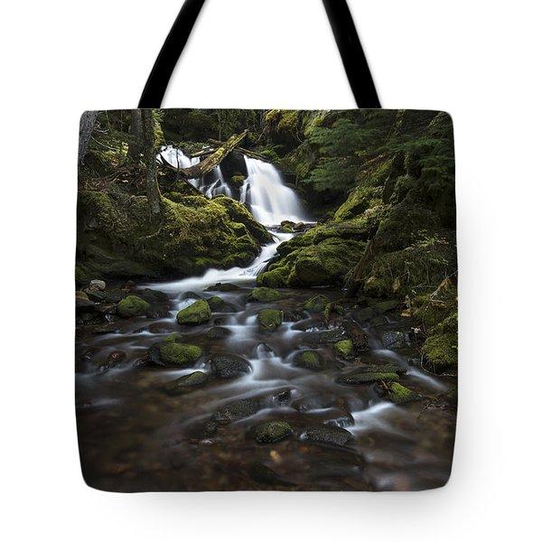Packer Falls #3 Tote Bag