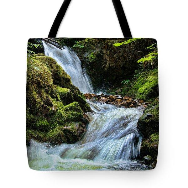 Packer Falls Vert 1 Tote Bag