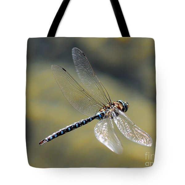 Tote Bag featuring the photograph Paddletail Darner In Flight by Vivian Christopher