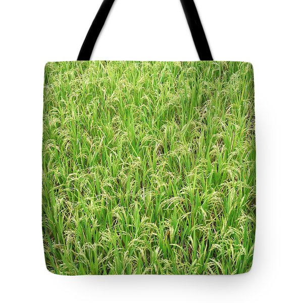 Tote Bag featuring the photograph Paddy Field by Yew Kwang
