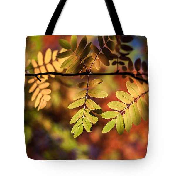 Paint  Tote Bag by Aaron Aldrich