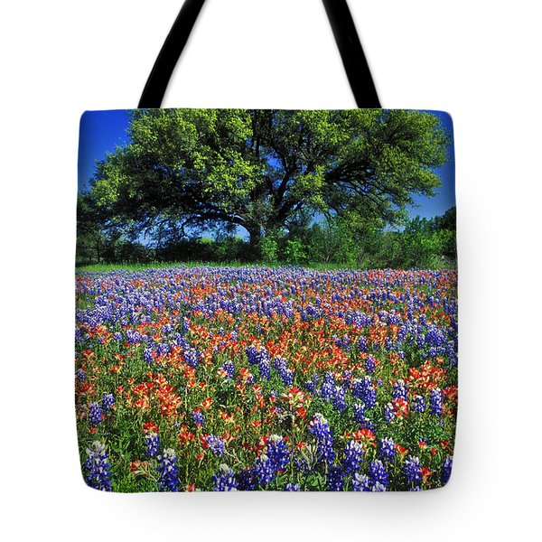 Paintbrush And Bluebonnets - Fs000057 Tote Bag