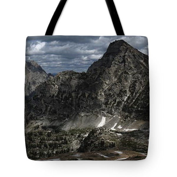 Paintbrush Divide Tote Bag by Raymond Salani III