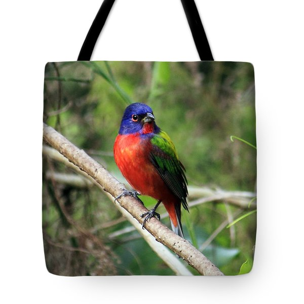 Tote Bag featuring the photograph Painted Bunting Photo by Meg Rousher