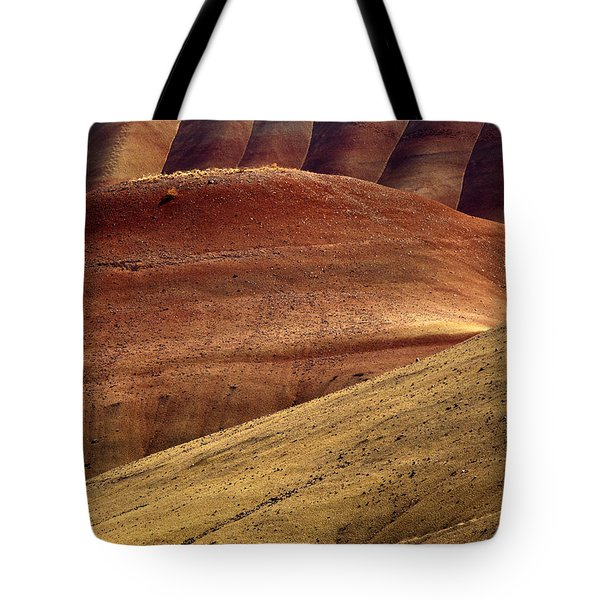 Painted Curves Tote Bag by Mike  Dawson