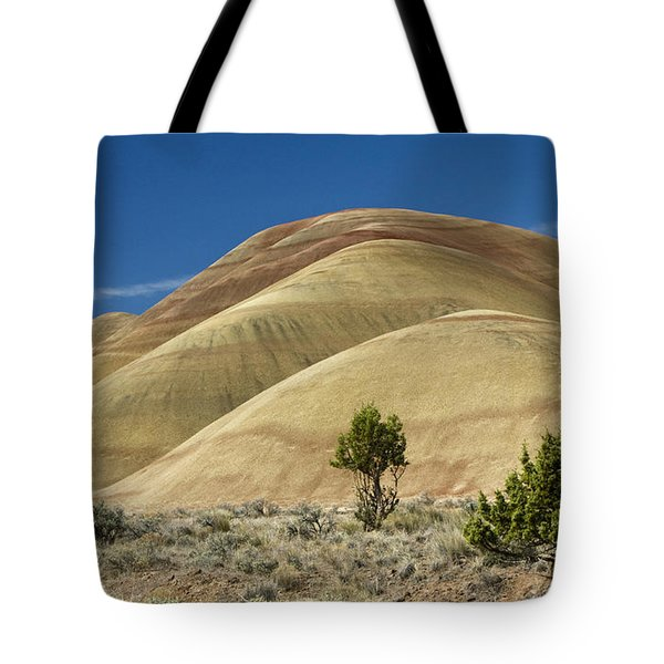 Tote Bag featuring the photograph Painted Hills by Sonya Lang
