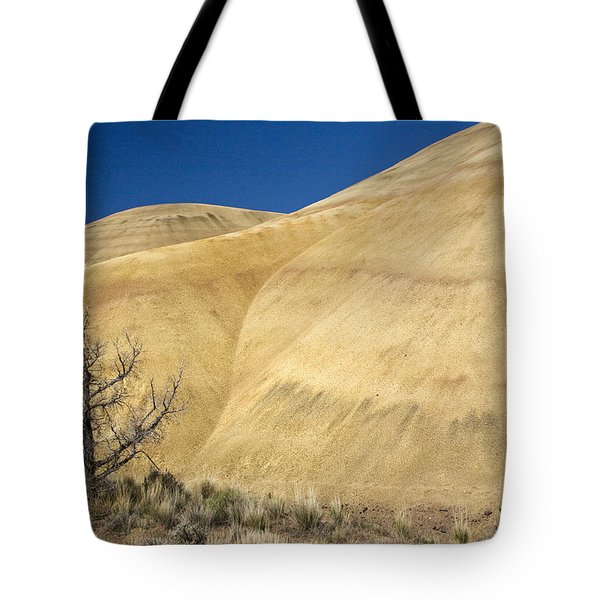 Tote Bag featuring the photograph Painted Hills Tree by Sonya Lang