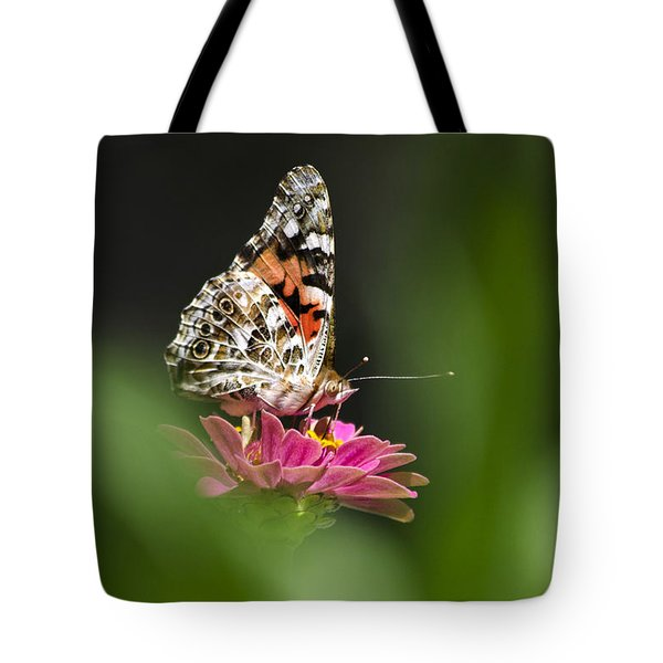 Painted Lady Butterfly At Rest Tote Bag by Christina Rollo
