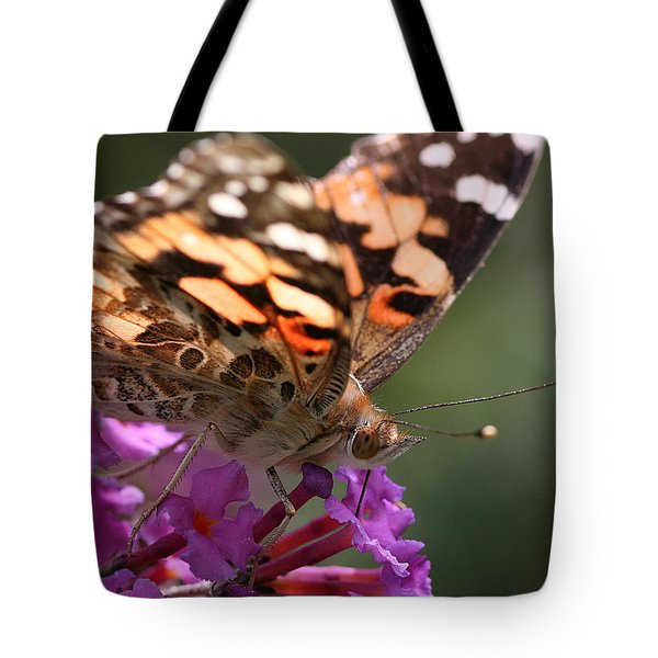 Painted Lady On Butterfly Bush Tote Bag
