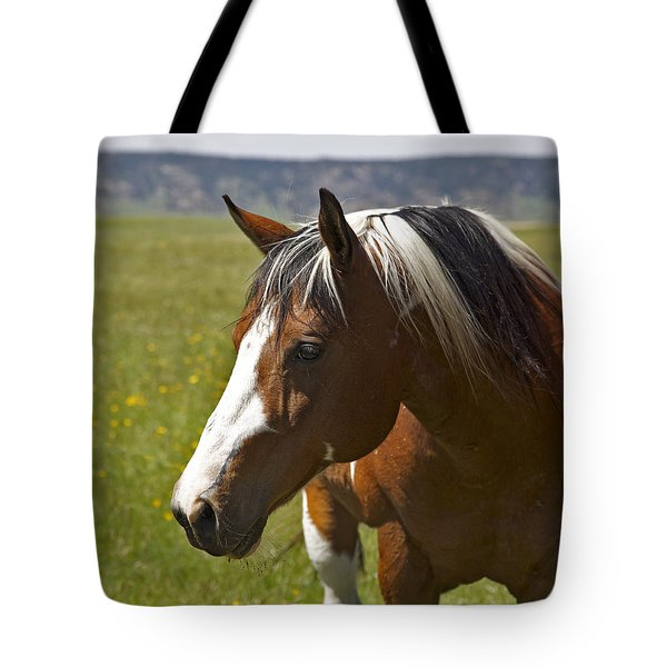 Paintin' Summer Tote Bag