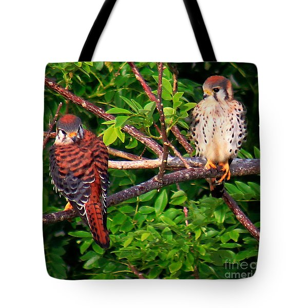 Caribbean Falcons Tote Bag
