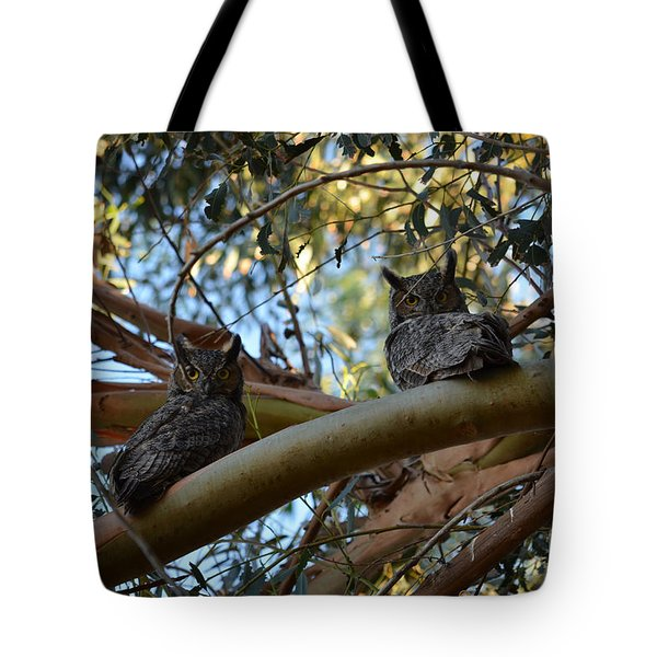 Pair Of Great Horned Owls Tote Bag