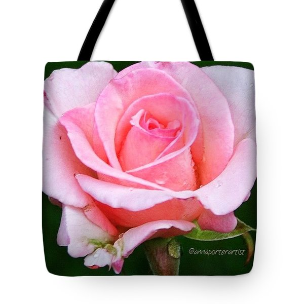 Pale Pink Beauty Tote Bag