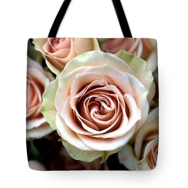 Pale Pink Roses Tote Bag by Kathy Yates