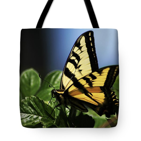 Tote Bag featuring the photograph Pale Swallowtail by Richard Stephen