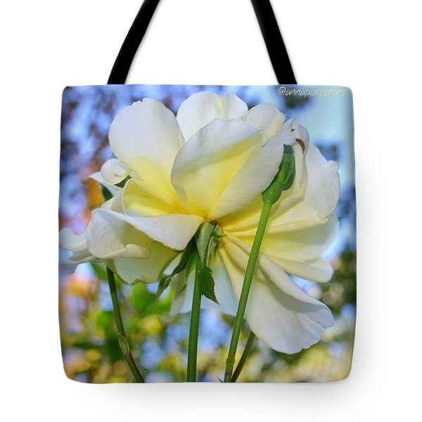 Pale Yellow Rose And Blue Sky Tote Bag