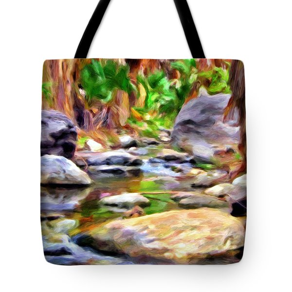 Palm Canyon Trail Tote Bag by Michael Pickett