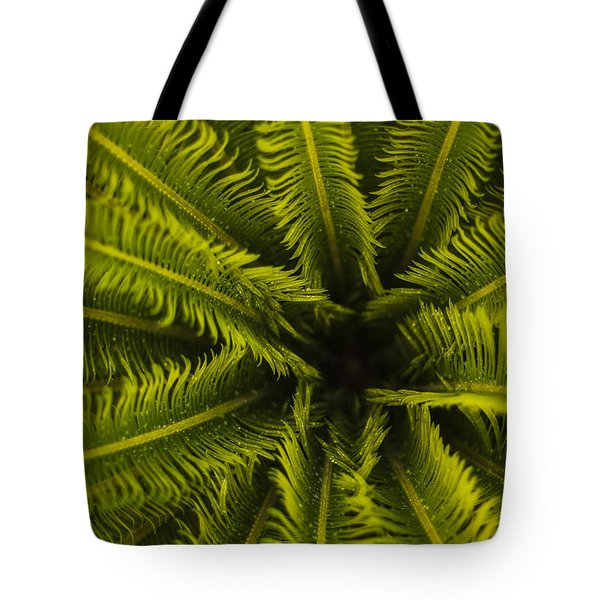 Tote Bag featuring the photograph Palm Fronds by Amber Kresge