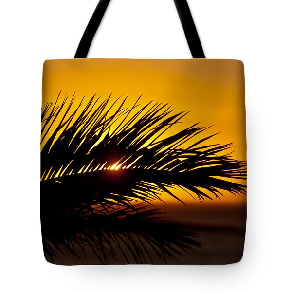 Palm Leaf In Sunset Tote Bag by Yngve Alexandersson