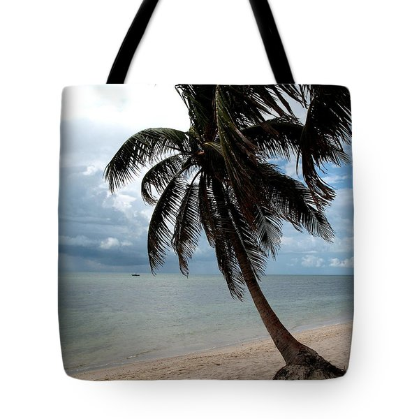 Tote Bag featuring the photograph Palm On The Beach by Christiane Schulze Art And Photography