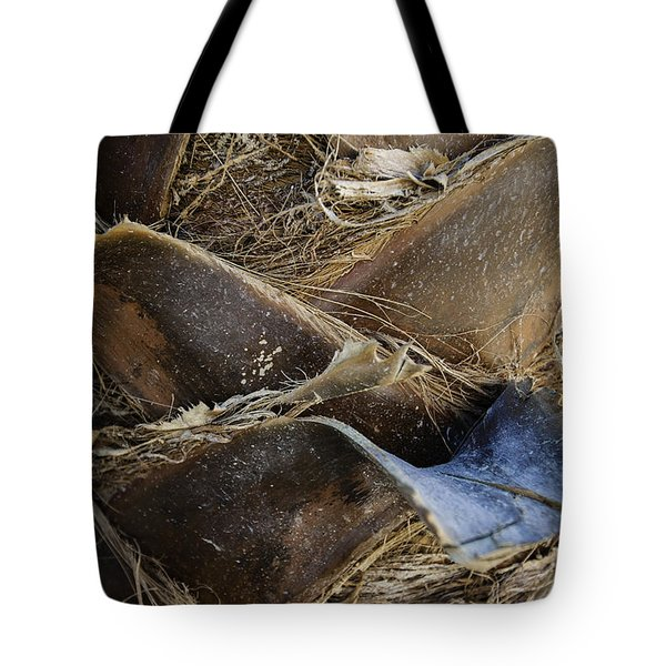 Palm Tree Bark Tote Bag by Sebastian Musial