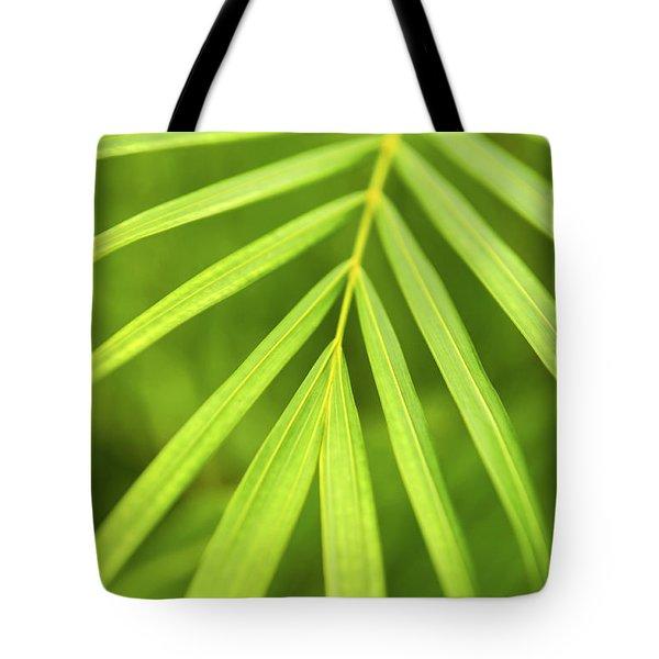 Palm Tree Leaf Tote Bag by Elena Elisseeva