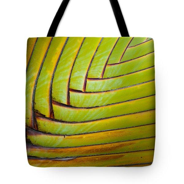 Palm Tree Leafs Tote Bag by Sebastian Musial