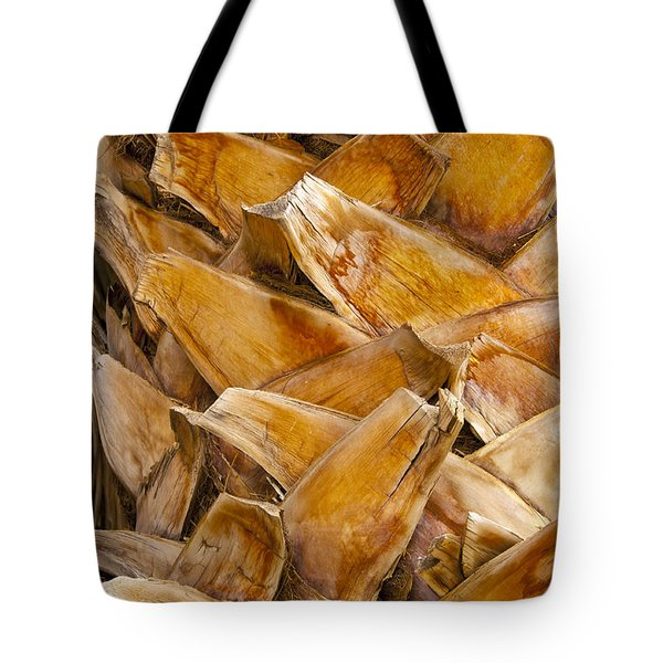 Palm Tree Trunk Detail Tote Bag by Bob Phillips