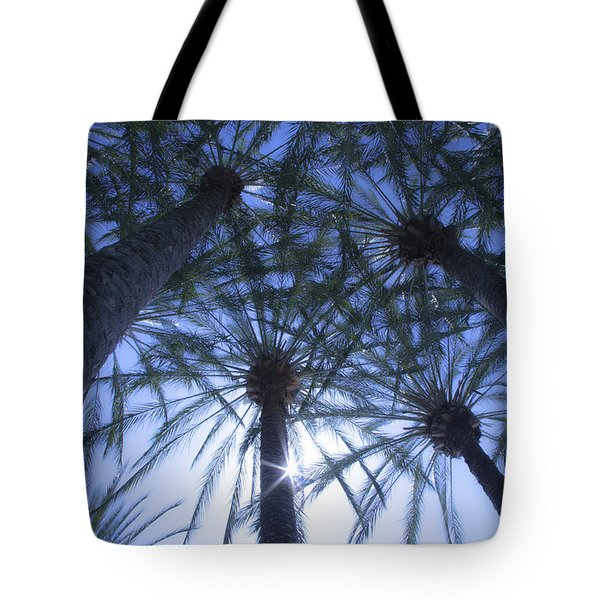 Tote Bag featuring the photograph Palm Trees In The Sun by Jerry Cowart