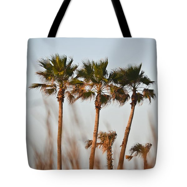 Palm Trees Through Tall Grass Tote Bag
