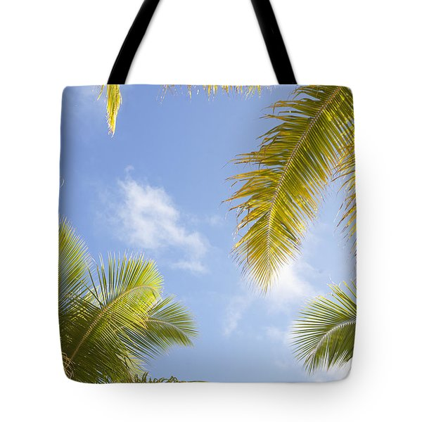 Palms And Sky Tote Bag by Brandon Tabiolo