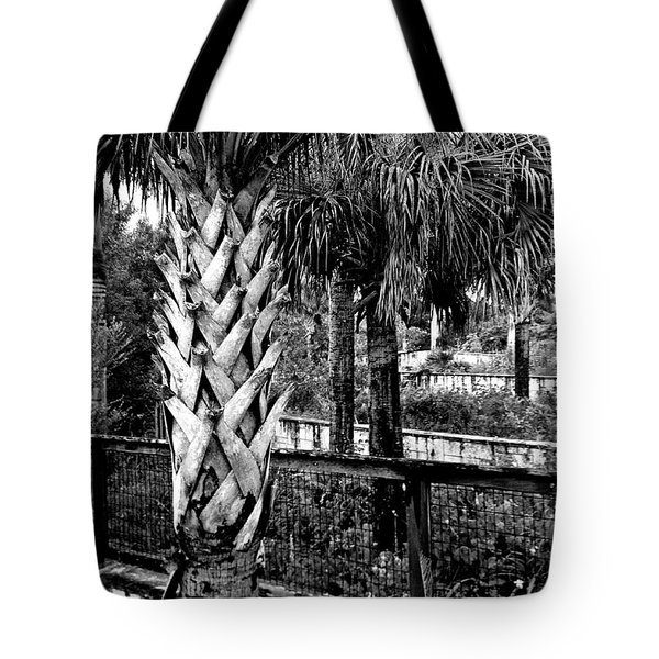 Palms And Walls In Black And White Tote Bag by K Simmons Luna