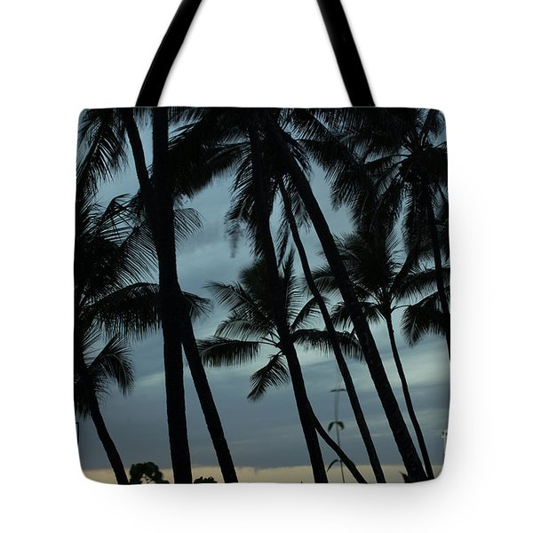 Palms At Dusk Tote Bag by Suzanne Luft