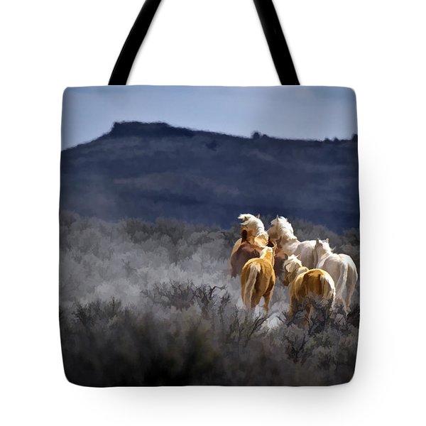 Palomino Buttes Band Tote Bag