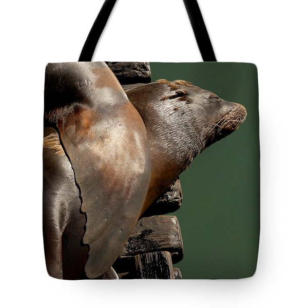 Tote Bag featuring the photograph Pals by Bob and Jan Shriner